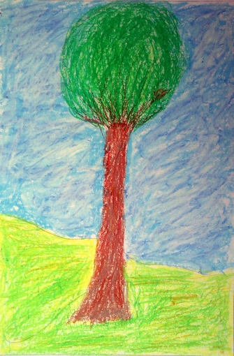 trees seaso 005