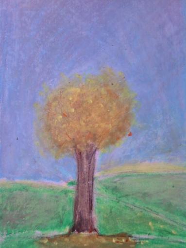 trees seas 002