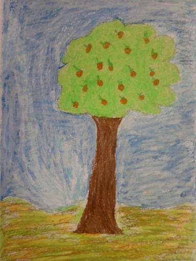 trees seas 006