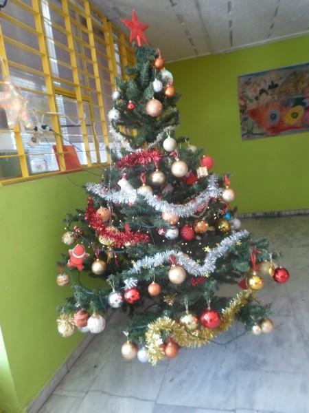 SAM_2991SM-CHRISTMAS TREE