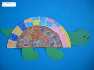 Alex's turtle