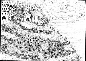 Αγκαθωτοί θάμνοι Καρπάθου της Αμαλίας Κ. Ηλιάδη