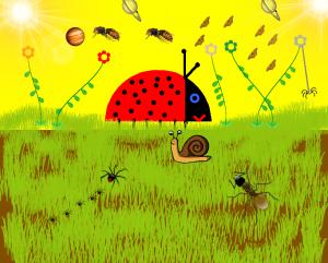 Ο πλανήτης των εντόμων
