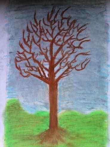 trees seas 003a