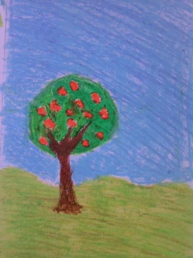 trees seas 004