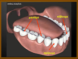 δοντια 2