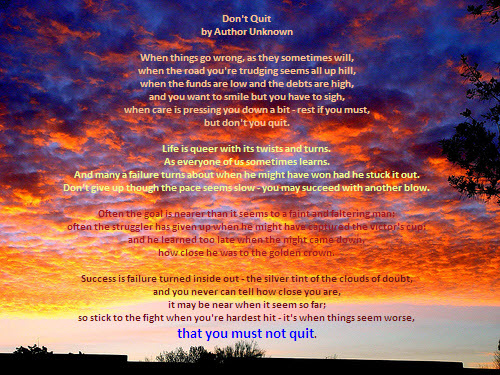 not-quit.jpg
