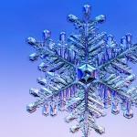 νιφάδα χιονιού