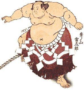 sumo_1.jpg
