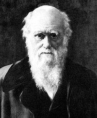 darwin_1881.jpg