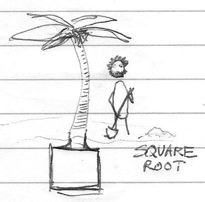 square-root.jpg