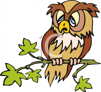 tired_brown_owl.png
