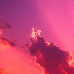 Εικόνα προφίλ του/της Αφροδίτη Αρετάκη