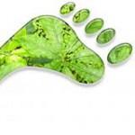 Εικόνα προφίλ του/της greenstep ,Στέλλα Πρωτόπαπα