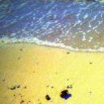 Εικόνα προφίλ του/της ΜΑΡΓΑΡΙΤΗ ΧΡΥΣΟΥΛΑ-ΕΛΕΝΗ ( Χρυσαλένα)