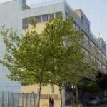 Λογότυπο της ομάδας του 2ο ΠΠΓΕΛ-Αθηνών-Ερευνητικές Εργασίες Α΄ Τάξης