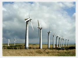 windfarm02