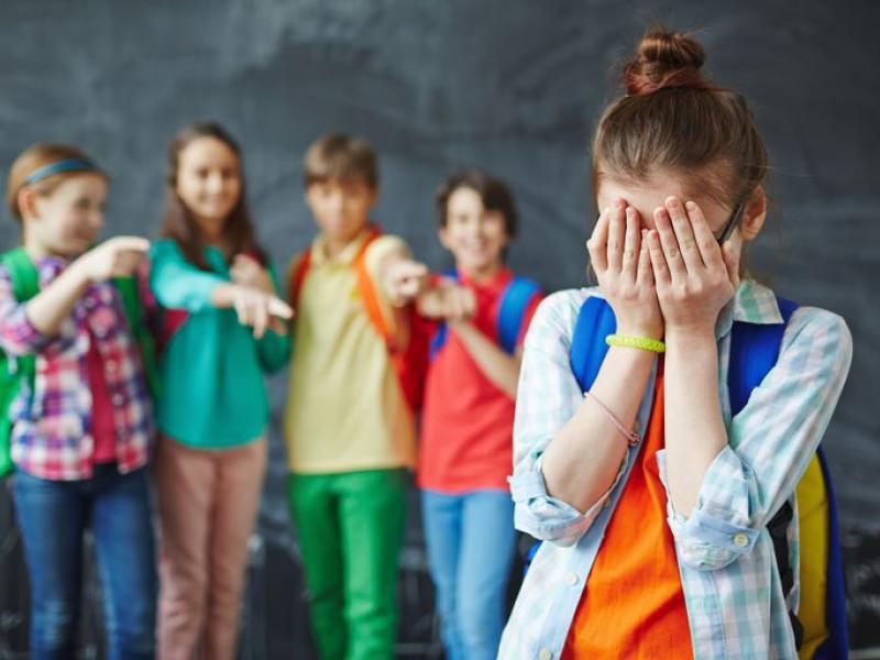 Βία και Επιθετικότητα στο σχολείο