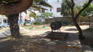 Εικόνες από τον κήπο του σχολείου
