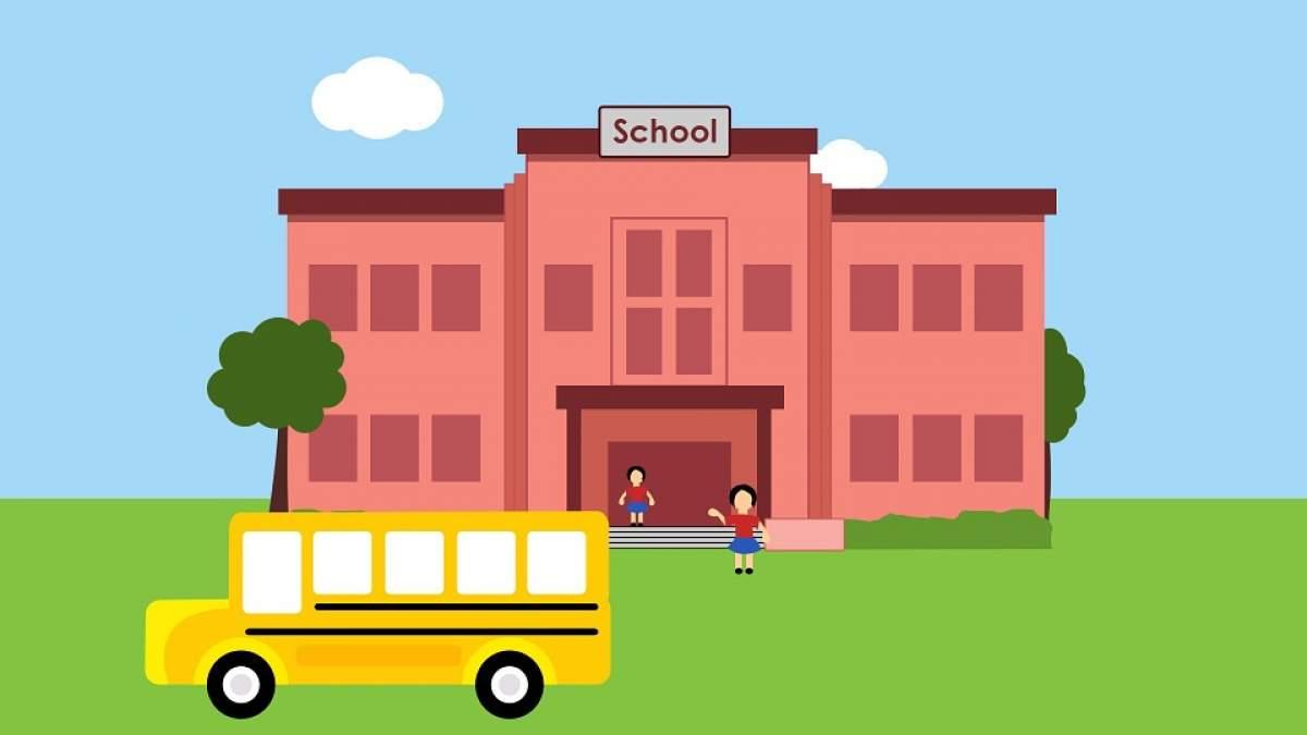 226423-school