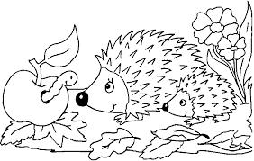 σκαντζόχοιρος