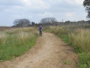 Ποδηλασία στη φύση.