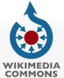 commons-wikimedia