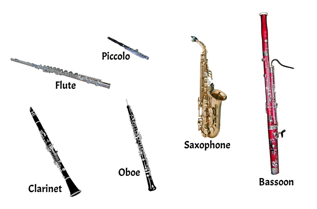 woodwinds family