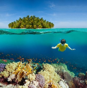 498584_maldivy_tropiki_ostrov_dajving_1600x1623_www.GdeFon.ru_
