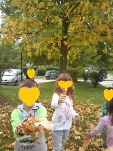 Ξερά κίτρινα φύλλα.