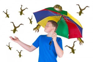 Raining-frogs