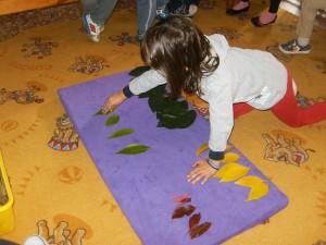 ...τα φύλλα σε ομάδες σύμφωνα  με το χρώμα τους.