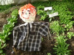 Ποιος είναι ο κοκκινομάλλης; Το σκιάχτρο του κήπου μας!