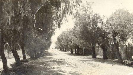 Οδός Μινώας το 1930