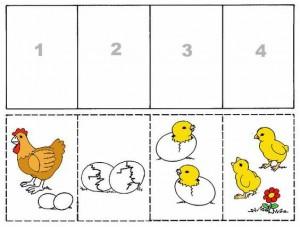 σειροθέτηση-κότα