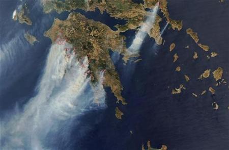 greekforrests