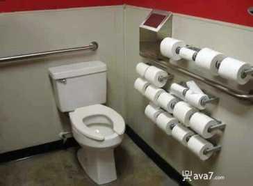 toilet-papers.jpg