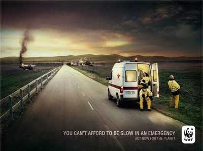wwf_ambulance-550x410.jpg